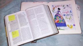 biblecolor